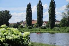 Pirna-Kanufahren-auf-der-Elbe-kl